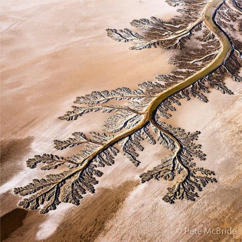 co-river-delta